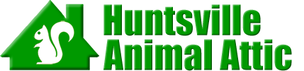 Huntsville Animal Attic